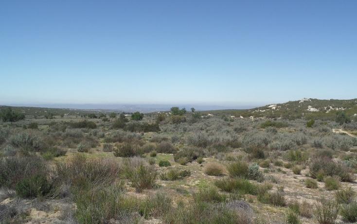 Foto de terreno comercial en venta en  , el refugio, tecate, baja california, 1191941 No. 04