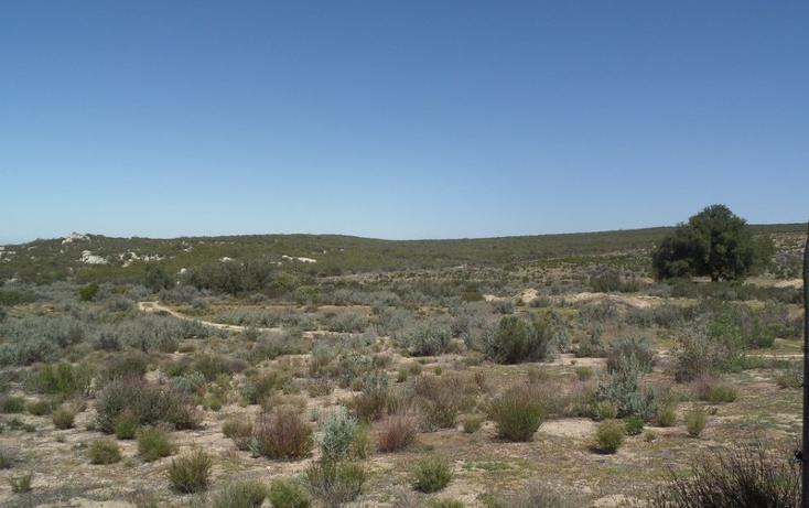 Foto de terreno comercial en venta en  , el refugio, tecate, baja california, 1191941 No. 05
