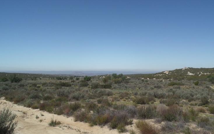 Foto de terreno comercial en venta en  , el refugio, tecate, baja california, 1191941 No. 06