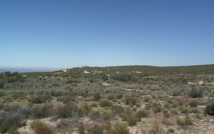 Foto de terreno comercial en venta en  , el refugio, tecate, baja california, 1191941 No. 08