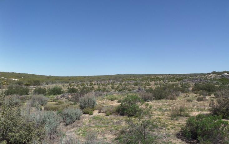 Foto de terreno comercial en venta en  , el refugio, tecate, baja california, 1191941 No. 12