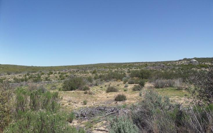 Foto de terreno comercial en venta en  , el refugio, tecate, baja california, 1191941 No. 14