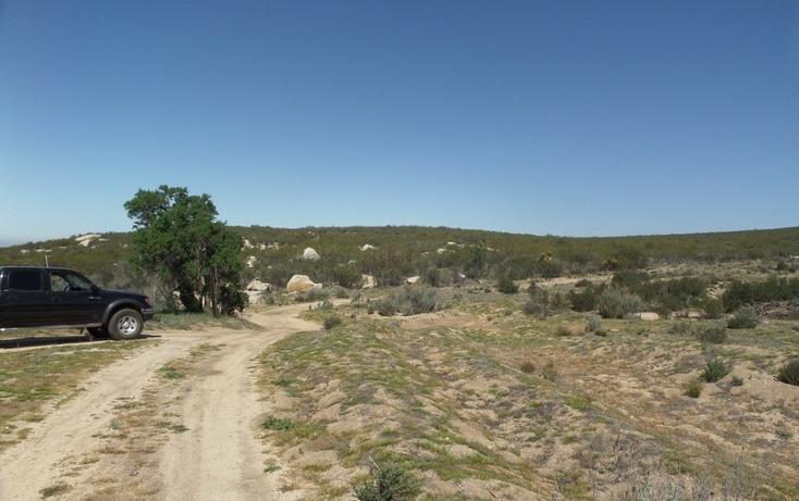 Foto de terreno comercial en venta en  , el refugio, tecate, baja california, 1191941 No. 15