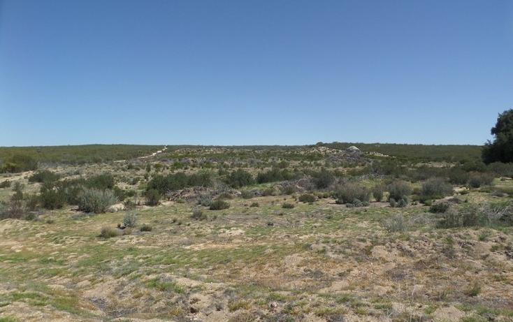 Foto de terreno comercial en venta en  , el refugio, tecate, baja california, 1191941 No. 16