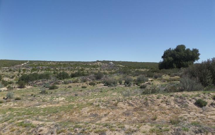 Foto de terreno comercial en venta en  , el refugio, tecate, baja california, 1191941 No. 17