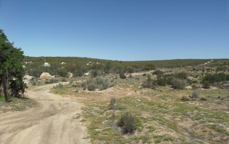 Foto de terreno comercial en venta en  , el refugio, tecate, baja california, 1191941 No. 18
