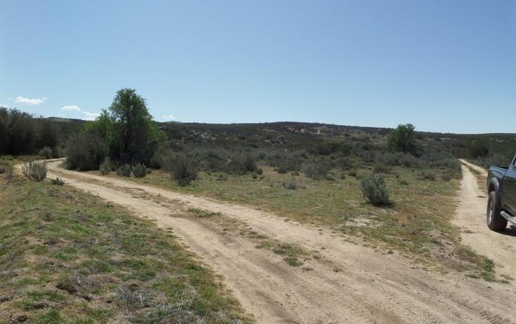 Foto de terreno comercial en venta en  , el refugio, tecate, baja california, 1191941 No. 22