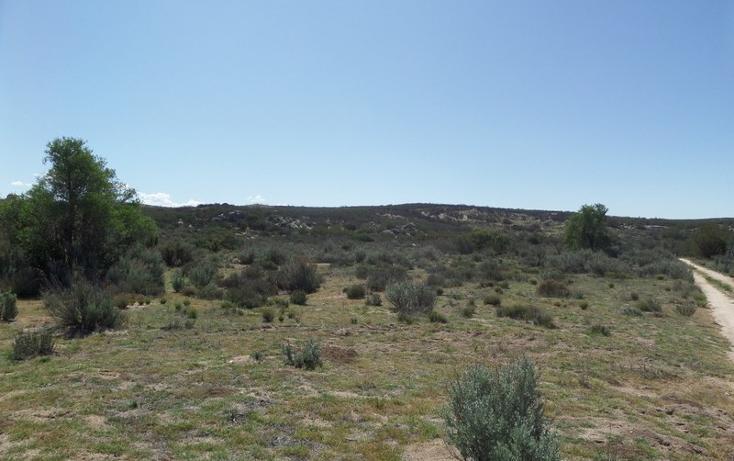 Foto de terreno comercial en venta en  , el refugio, tecate, baja california, 1191941 No. 23