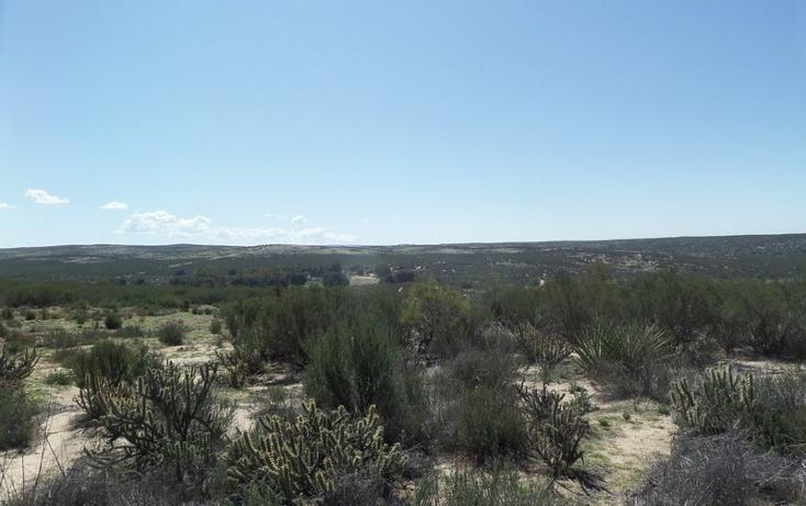 Foto de terreno comercial en venta en  , el refugio, tecate, baja california, 1191941 No. 27