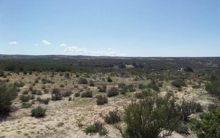 Foto de terreno comercial en venta en  , el refugio, tecate, baja california, 1191941 No. 29