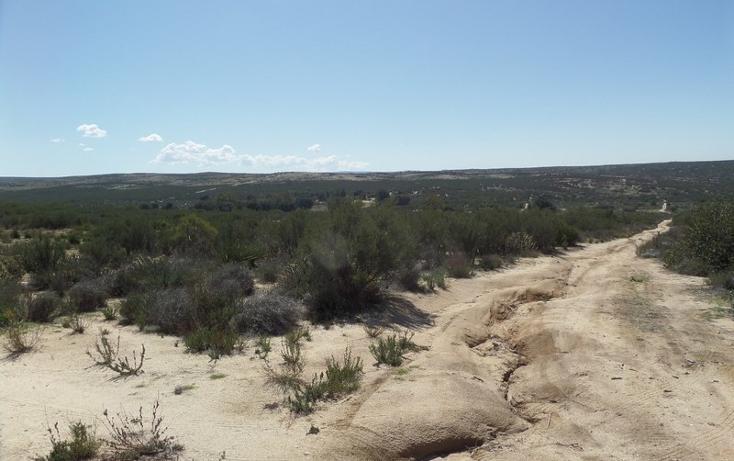 Foto de terreno comercial en venta en  , el refugio, tecate, baja california, 1191941 No. 30