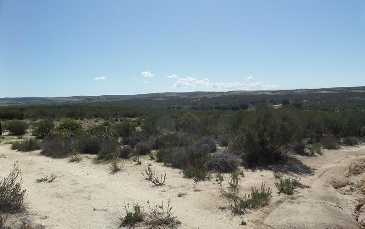 Foto de terreno comercial en venta en  , el refugio, tecate, baja california, 1191941 No. 31