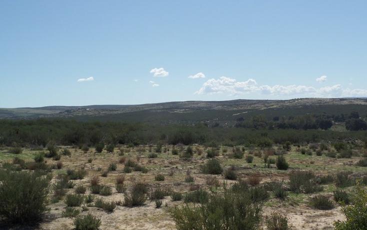 Foto de terreno comercial en venta en  , el refugio, tecate, baja california, 1191941 No. 32