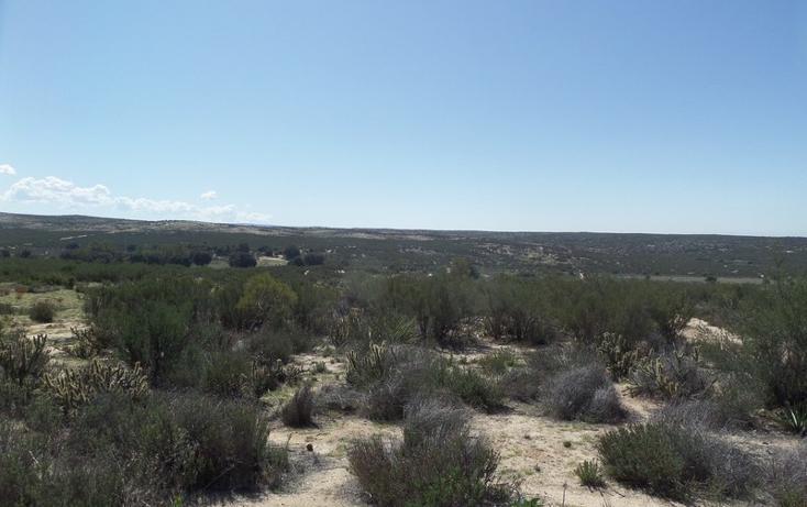 Foto de terreno comercial en venta en  , el refugio, tecate, baja california, 1191941 No. 34