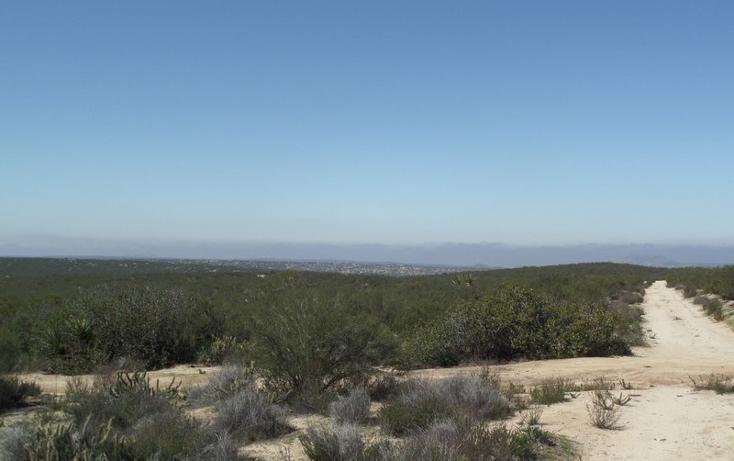 Foto de terreno comercial en venta en  , el refugio, tecate, baja california, 1191941 No. 35