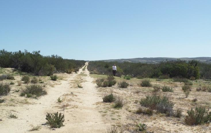 Foto de terreno comercial en venta en  , el refugio, tecate, baja california, 1191941 No. 36