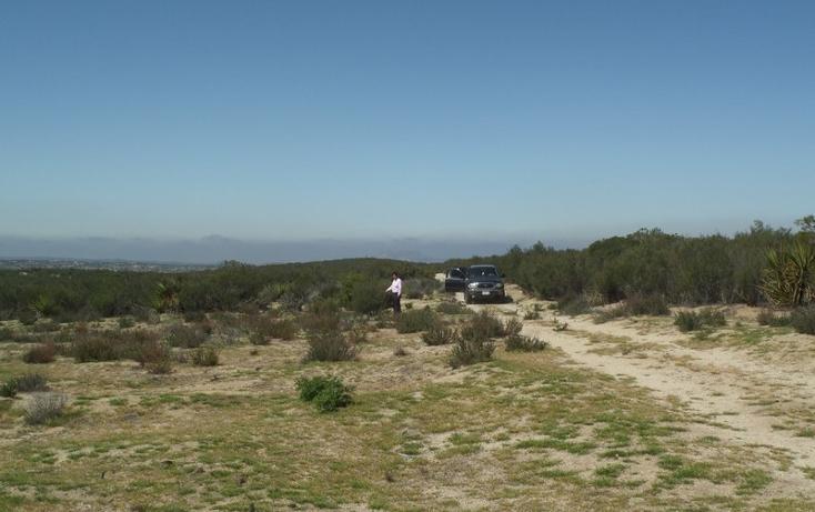 Foto de terreno comercial en venta en  , el refugio, tecate, baja california, 1191941 No. 39
