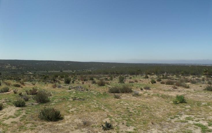 Foto de terreno comercial en venta en  , el refugio, tecate, baja california, 1191941 No. 43