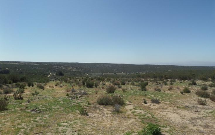Foto de terreno comercial en venta en  , el refugio, tecate, baja california, 1191941 No. 45