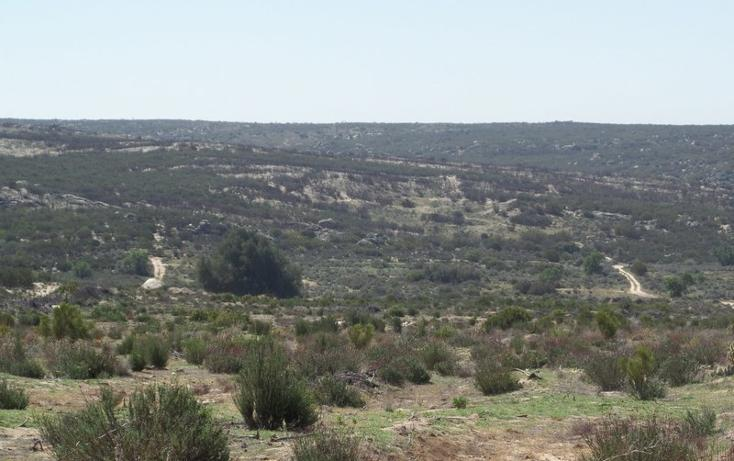 Foto de terreno comercial en venta en  , el refugio, tecate, baja california, 1191941 No. 49