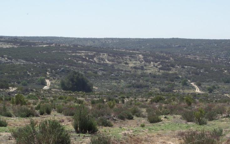 Foto de terreno comercial en venta en  , el refugio, tecate, baja california, 1191941 No. 50