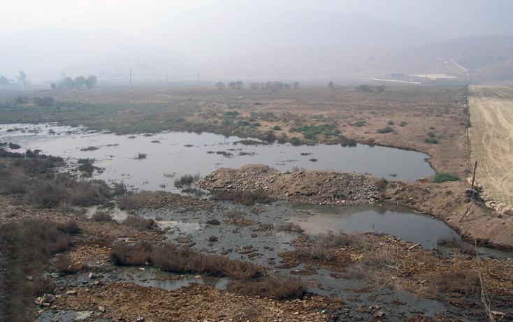 Foto de terreno comercial en venta en  , el refugio, tecate, baja california, 1191995 No. 04