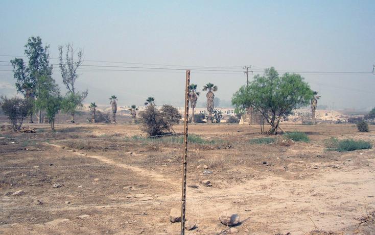 Foto de terreno comercial en venta en  , el refugio, tecate, baja california, 1191995 No. 06