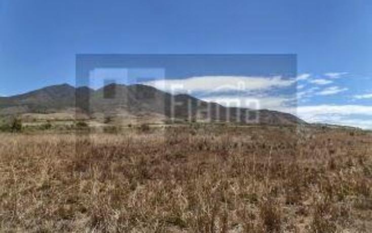 Foto de rancho en venta en  , el refugio, tepic, nayarit, 949423 No. 08