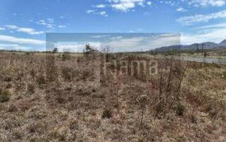 Foto de rancho en venta en  , el refugio, tepic, nayarit, 949423 No. 10
