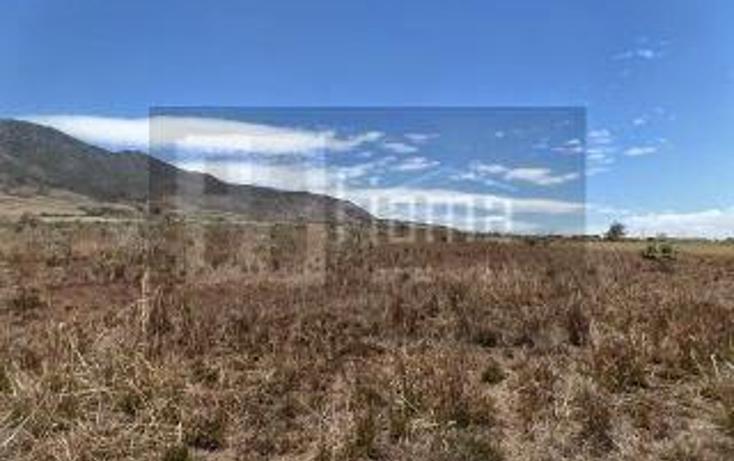 Foto de rancho en venta en  , el refugio, tepic, nayarit, 949423 No. 11