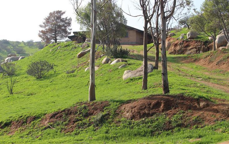 Foto de terreno habitacional en venta en  , el refugio, tijuana, baja california, 1876236 No. 06
