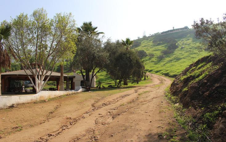Foto de terreno habitacional en venta en  , el refugio, tijuana, baja california, 1876236 No. 17
