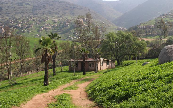 Foto de terreno habitacional en venta en  , el refugio, tijuana, baja california, 1876236 No. 21