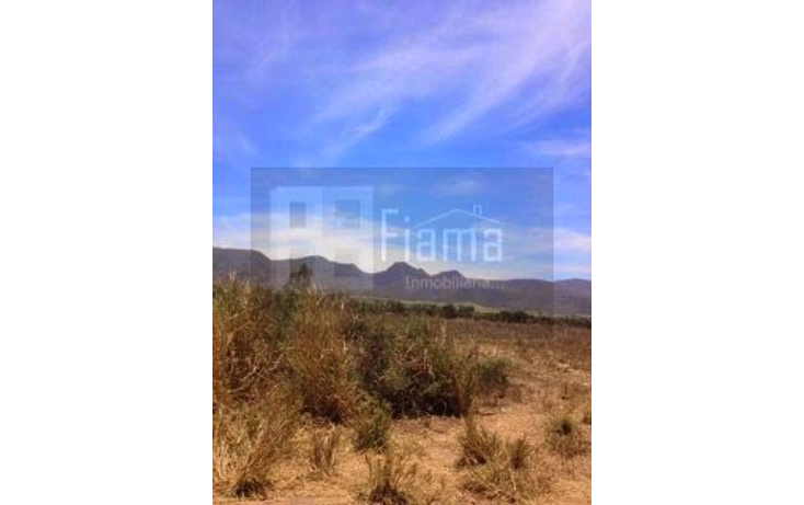 Foto de terreno comercial en venta en  , el refugio, xalisco, nayarit, 1258819 No. 02