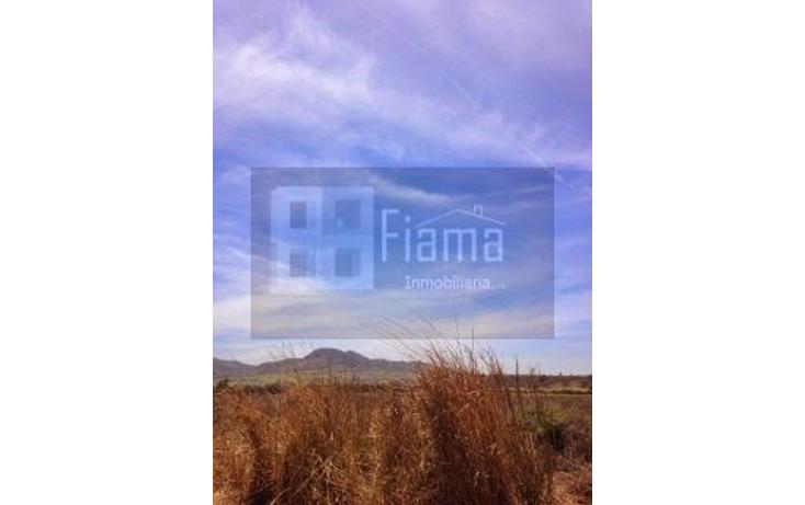 Foto de terreno comercial en venta en  , el refugio, xalisco, nayarit, 1258819 No. 05