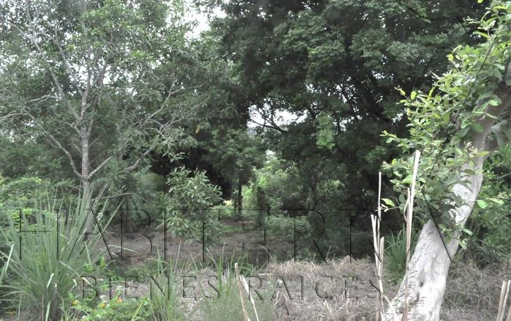 Foto de terreno habitacional en venta en  , el retiro, tuxpan, veracruz de ignacio de la llave, 1062425 No. 02