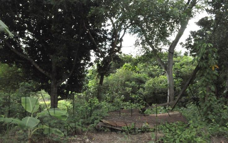 Foto de terreno habitacional en venta en  , el retiro, tuxpan, veracruz de ignacio de la llave, 1062425 No. 04