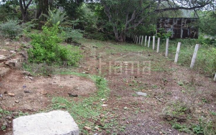 Foto de terreno industrial en venta en  , el rincón, tepic, nayarit, 1134009 No. 07