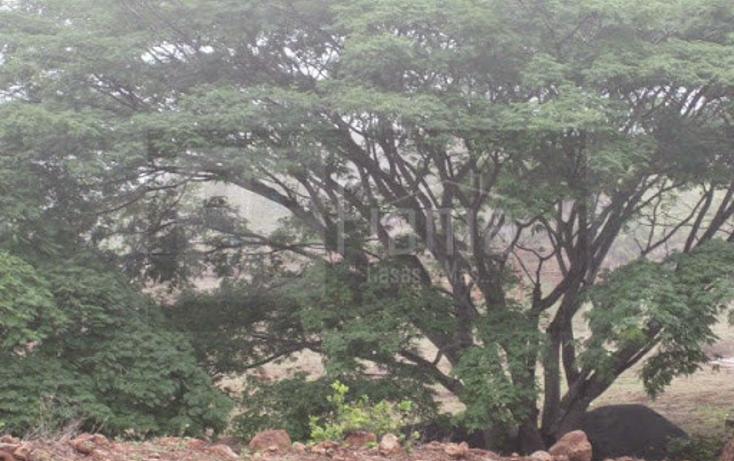 Foto de terreno industrial en venta en  , el rincón, tepic, nayarit, 1134009 No. 13