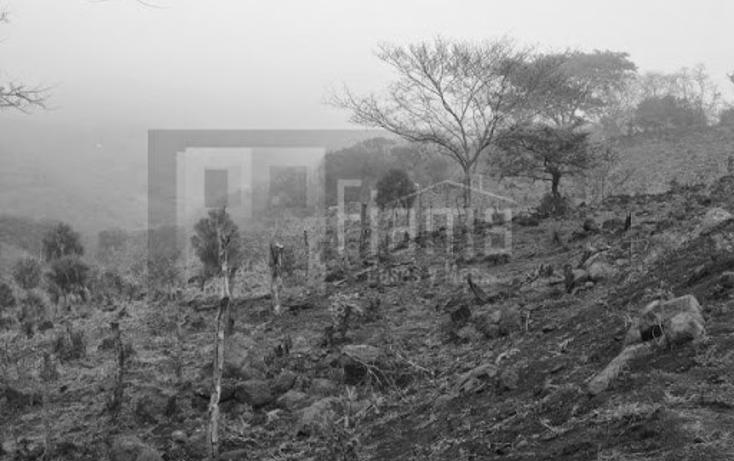 Foto de terreno industrial en venta en  , el rincón, tepic, nayarit, 1134009 No. 22