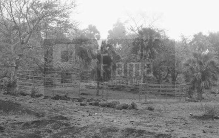 Foto de terreno industrial en venta en  , el rincón, tepic, nayarit, 1134009 No. 24