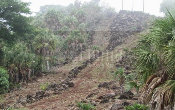 Foto de terreno industrial en venta en  , el rincón, tepic, nayarit, 1134009 No. 26