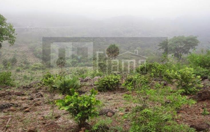 Foto de terreno industrial en venta en  , el rincón, tepic, nayarit, 1134009 No. 28