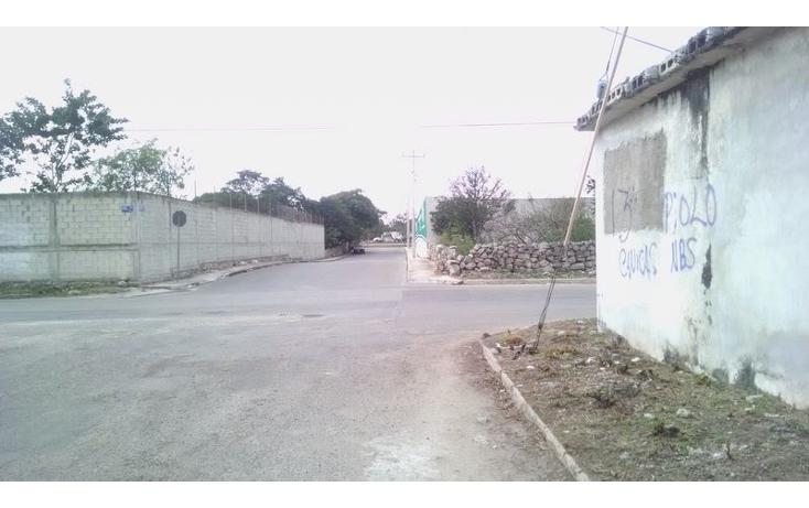 Foto de terreno comercial en renta en  , el roble, mérida, yucatán, 1560816 No. 06