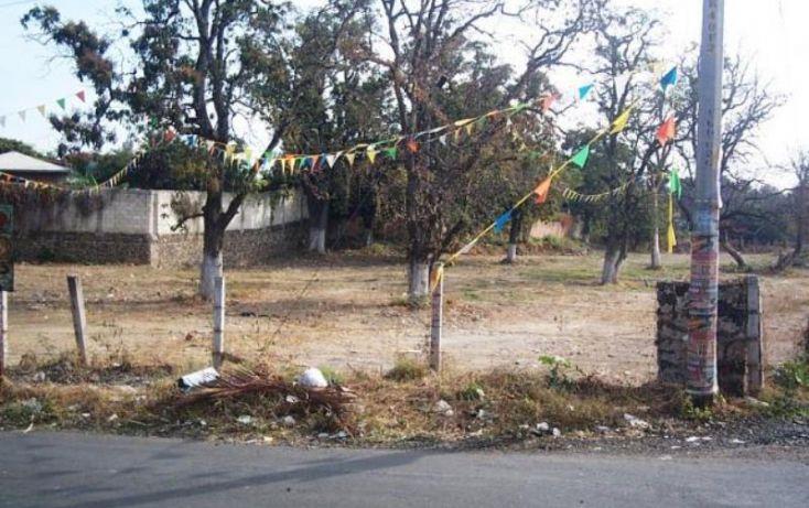 Foto de terreno habitacional en venta en, el rocio, yautepec, morelos, 1751596 no 05