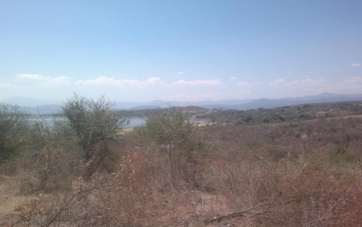 Foto de terreno habitacional en venta en  , el rodeo, miacatlán, morelos, 371212 No. 04