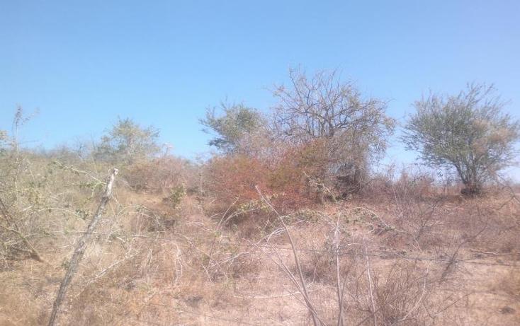 Foto de terreno habitacional en venta en  , el rodeo, miacatlán, morelos, 371212 No. 16