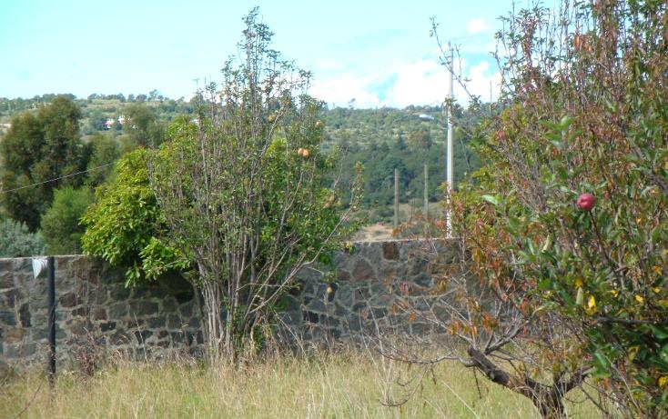 Foto de terreno habitacional en venta en  , el rosario ocotoxco, yauhquemehcan, tlaxcala, 1136755 No. 02
