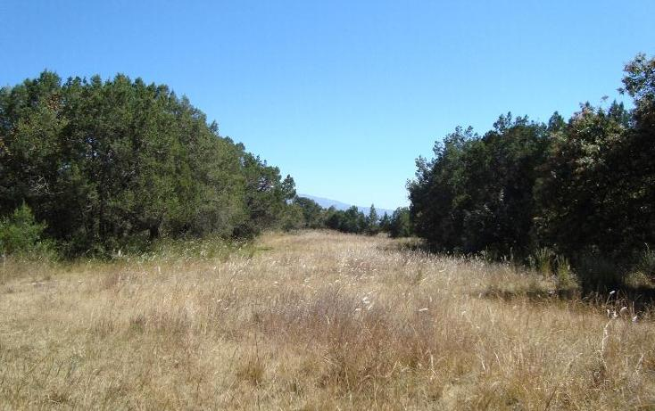 Foto de terreno habitacional en venta en  , el rosario ocotoxco, yauhquemehcan, tlaxcala, 397253 No. 03