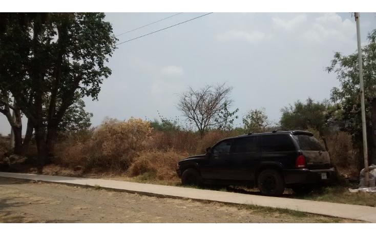 Foto de terreno comercial en venta en  , el sabino, marcos castellanos, michoac?n de ocampo, 2015896 No. 02